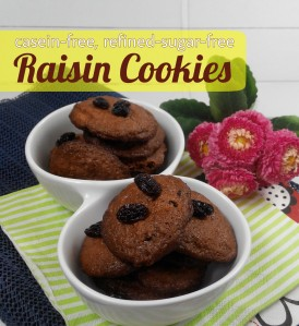 raisin_cookies[1]